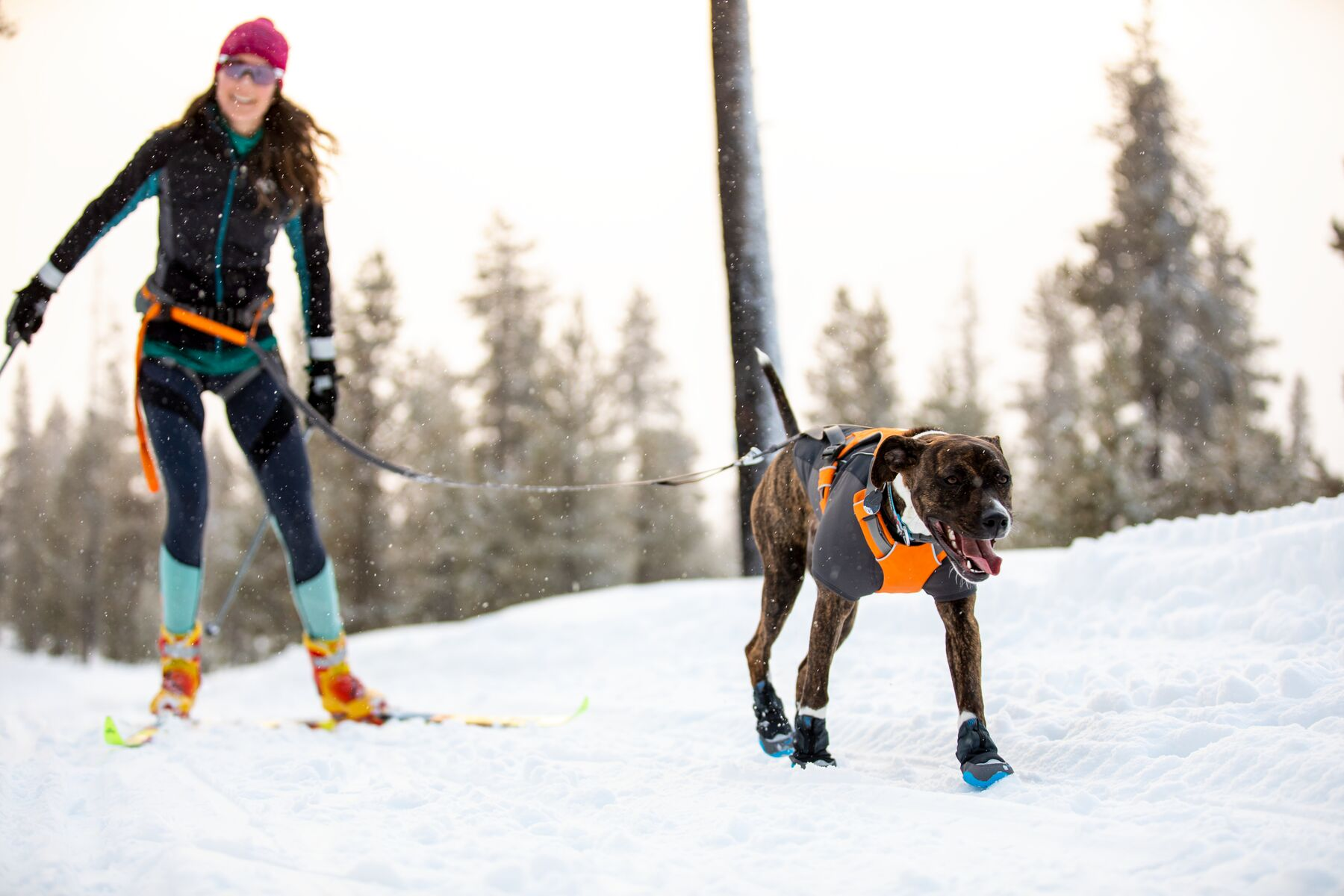 Ruffwear Cloud Chaser Jacket